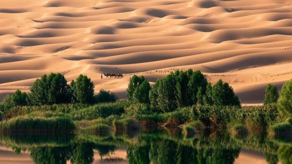 """Ai sẽ dẫn dắt dân tộc khỏi """"sa mạc"""" nô lệ ?"""